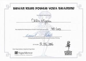 Bryan Kest Power Yoga Teacher Training